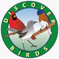 Discover Birds Blog