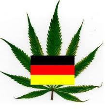 legalizar maconha
