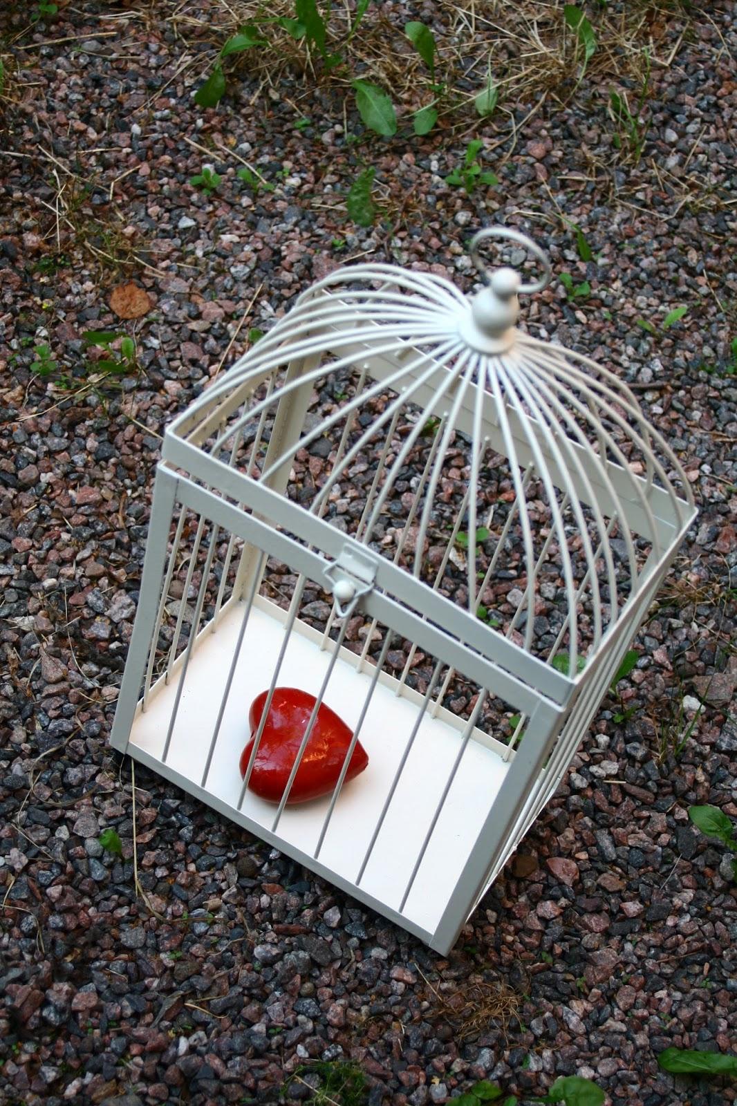 Coeur d'amour dans une cage
