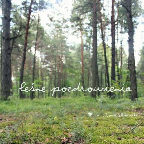 Leśne pozdrowienia