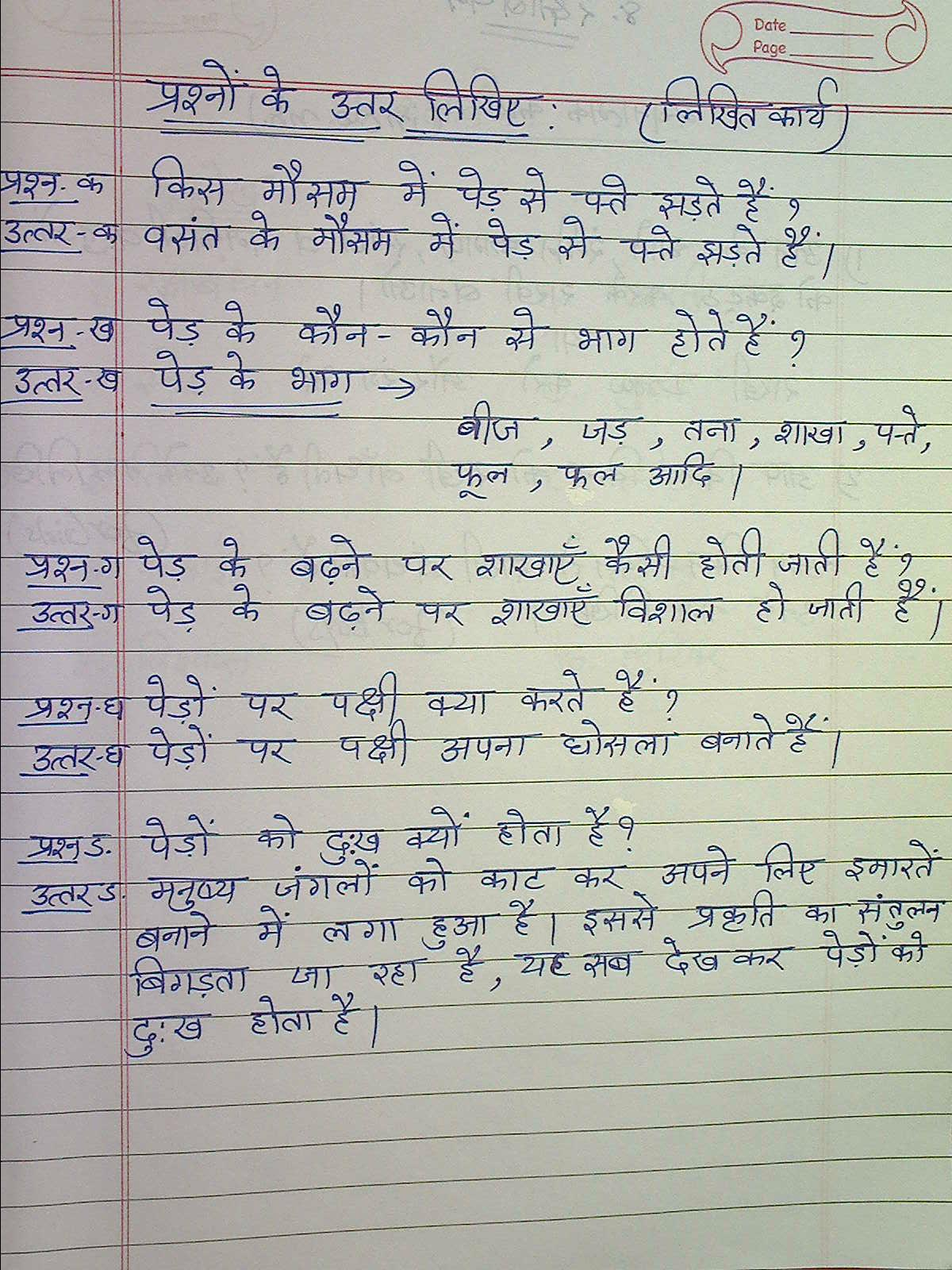 5 sentences on parrot in hindi Vocabulary in hindi – birds posted by nitin kumar on nov 20, 2012 in hindi language today, i have the vocabulary of birds for our hindi learners in hindi, bird(s) are called पक्षी ( pakshi ).
