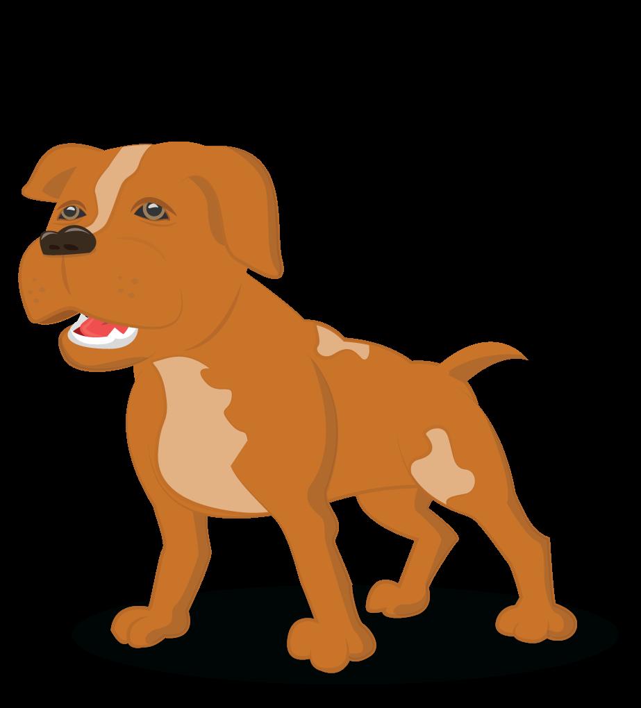 gambar anjing pitbull - gambar hewan