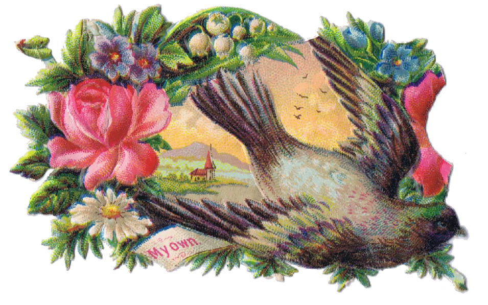 bird clip art antique graphics from http://knickoftimeinteriors.blogspot.com/