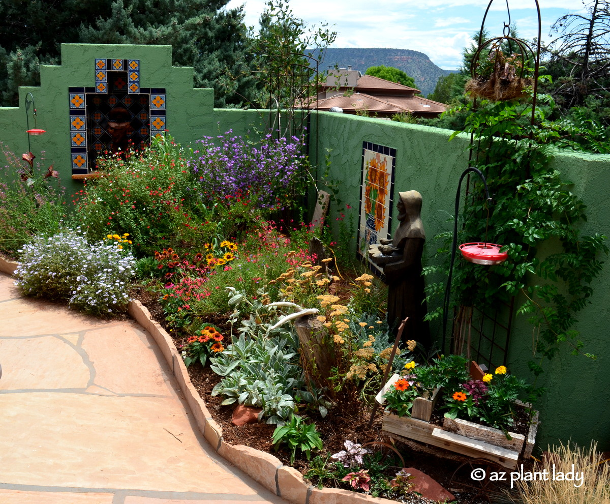 Small Space Garden: Hummingbird Paradise - Ramblings from a Desert on perennial garden plans zone 7, cottage gardens landscape design, perennial shade garden design, perennial garden layout design, perennial bulb garden design, perennial flower garden design plans, perennial garden plans zone 5, perennial garden plants,