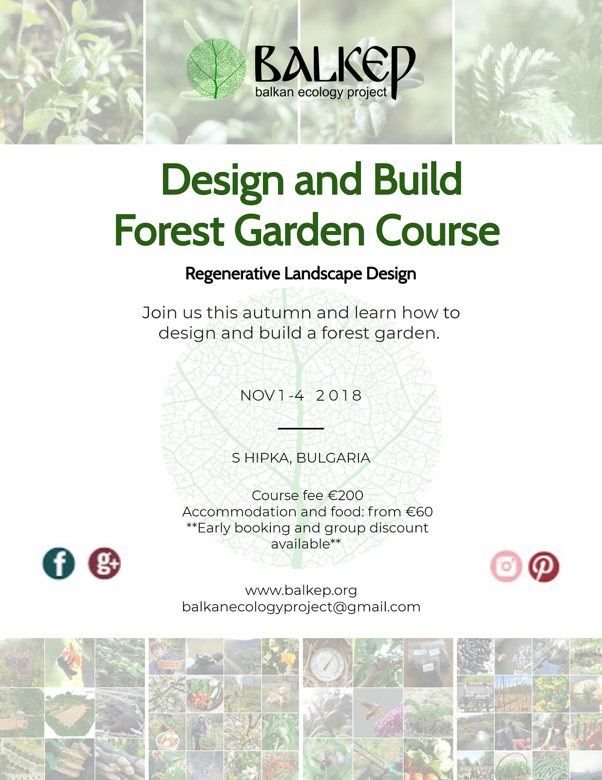 Design and Build Forest Garden Course