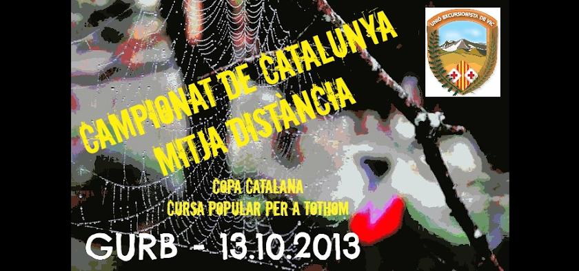 Campionat de Catalunya d'Orientació Mitja Distància - Gurb 2013