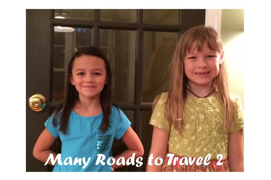 Many Roads To Travel 2