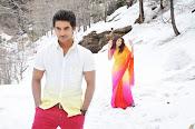 Pyar Mein Padipoyane Movie Photos Gallery-thumbnail-4