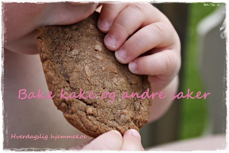 Bake kake og andre saker