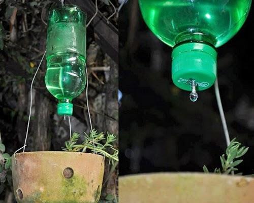 Consejos para cuidar el medio ambiente consejos para - Sistema riego goteo ...