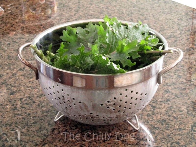 Recipe: kale chips are easy to make and can be a tempting treat for even the fussiest eaters