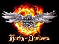 Harley Fest 2013