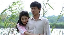 Xem Phim Bong Hong Cho Tuong Cuop