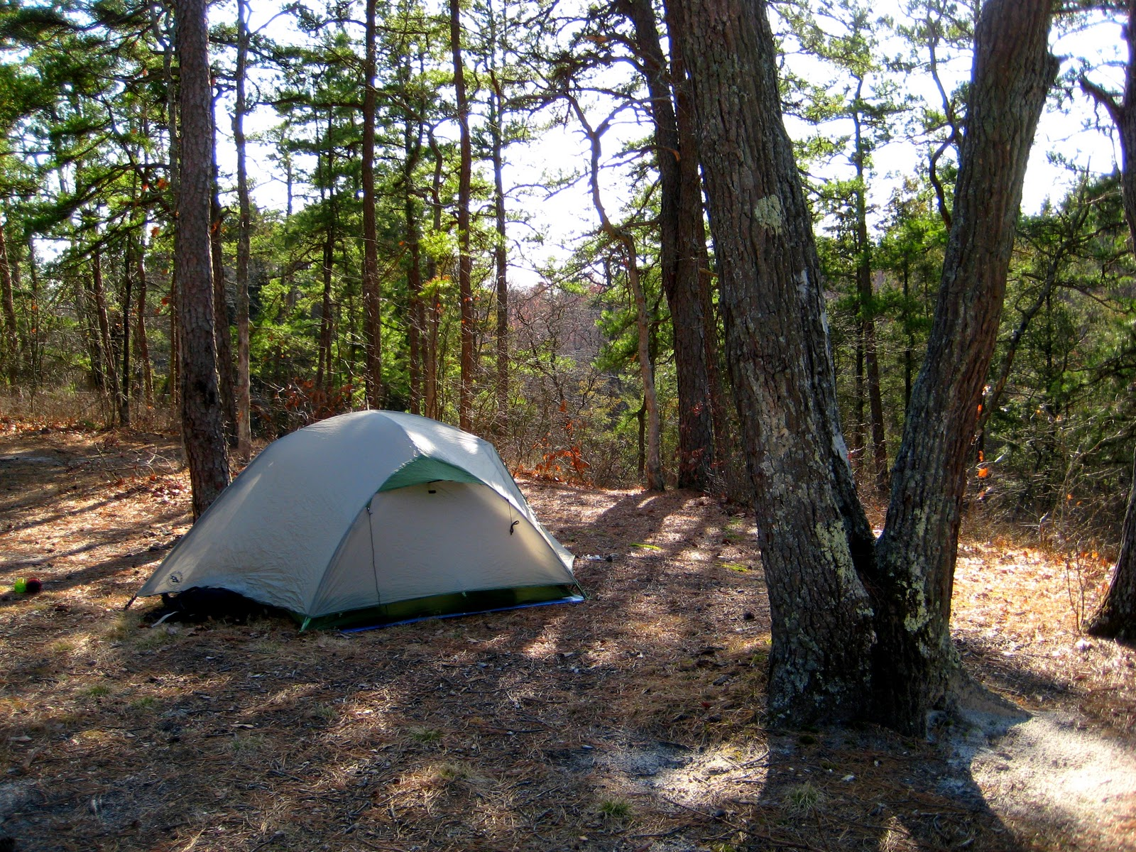Camping courtesy nine behaviors to avoid in public for Wharton state forest cabins
