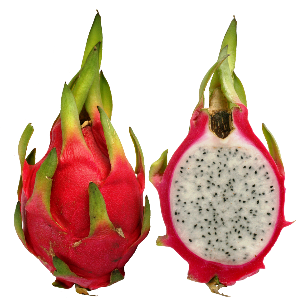 dragone fruit
