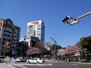 Tokyo spring time