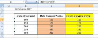 Contoh data rumus excel TEXT