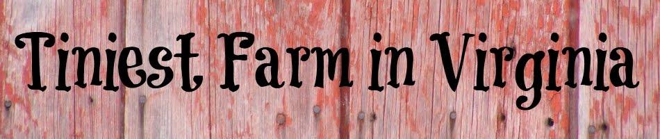 Tiniest Farm in Virginia