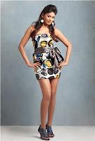 Actress Vijayalakshmi photo