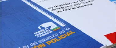 Ley de Estatuto policial