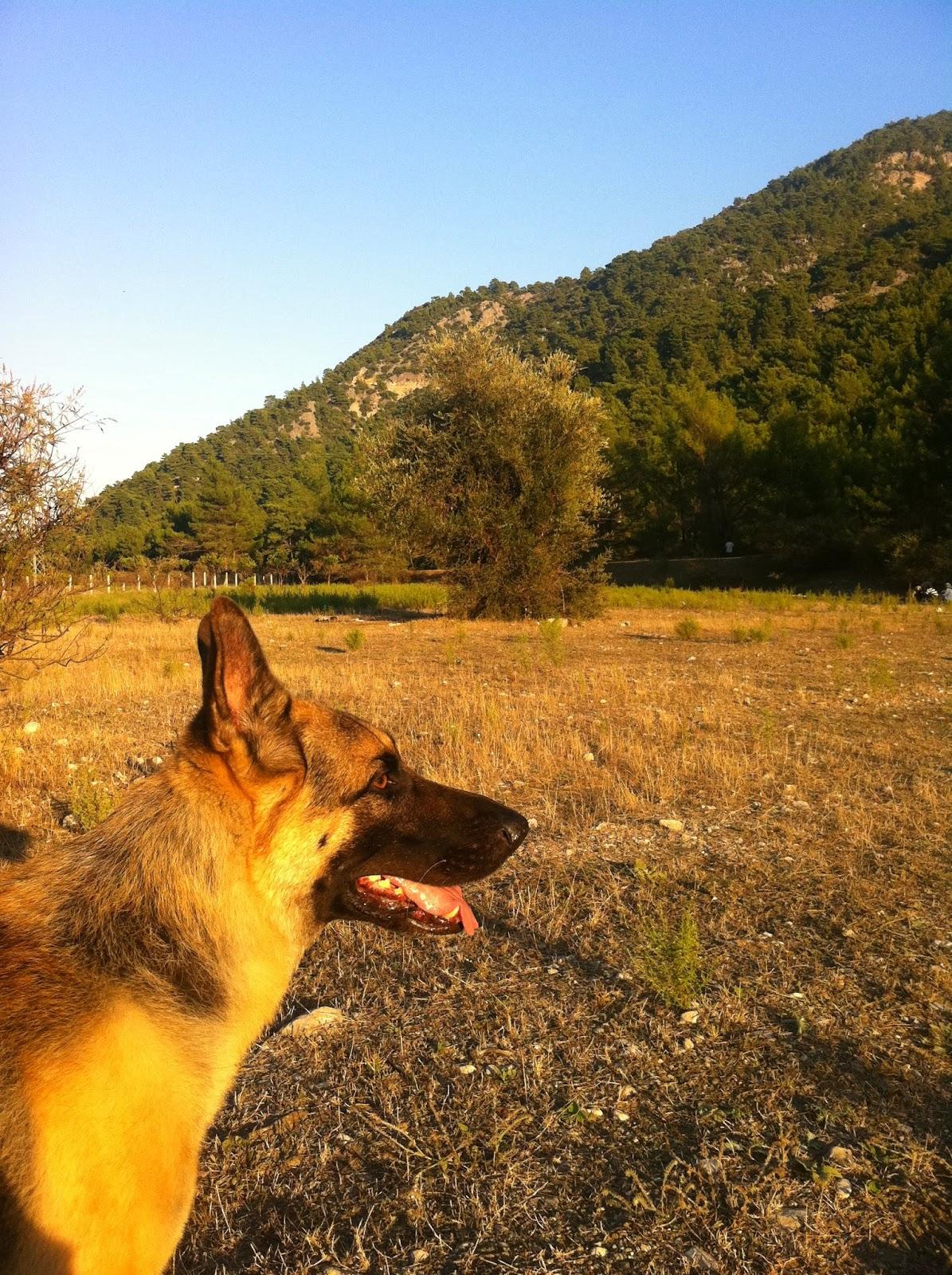 Antalya doğa