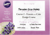CURSO WILTON N 2