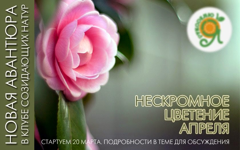 http://fatinika.blogspot.ru/2015/03/blog-post.html