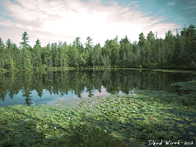 forest lake, ND filter, water, lillypads, clouds, reflection