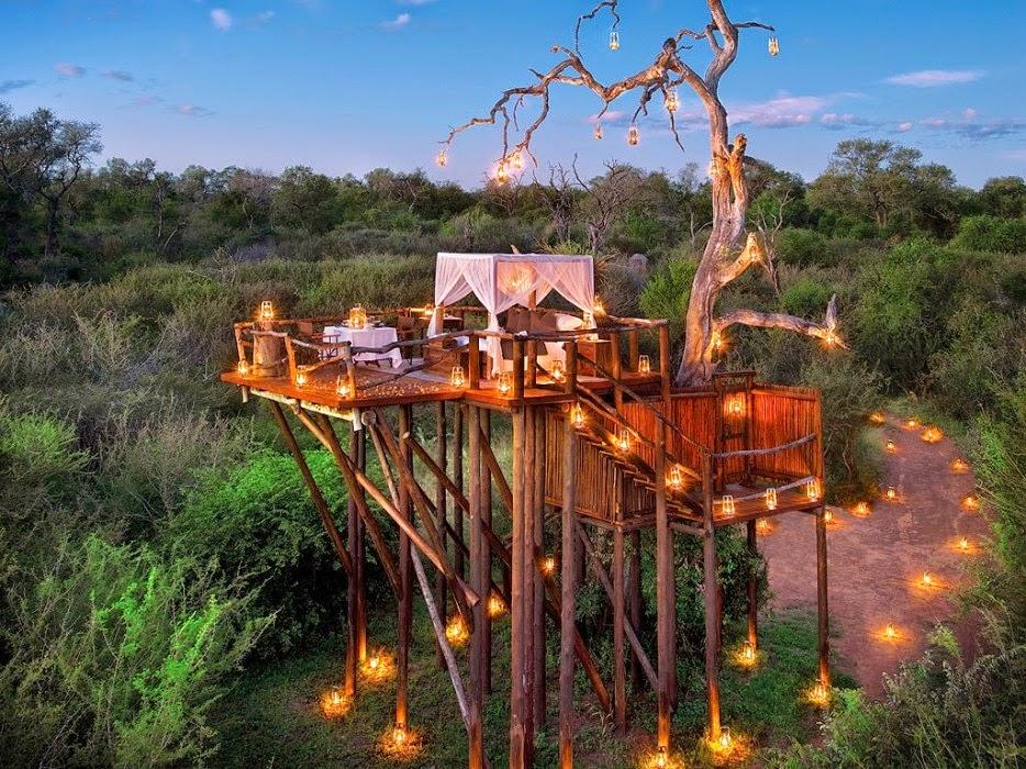 ساندز أسد ، جنوب أفريقيا