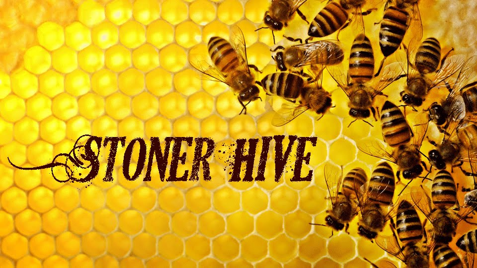 Stoner HiVe