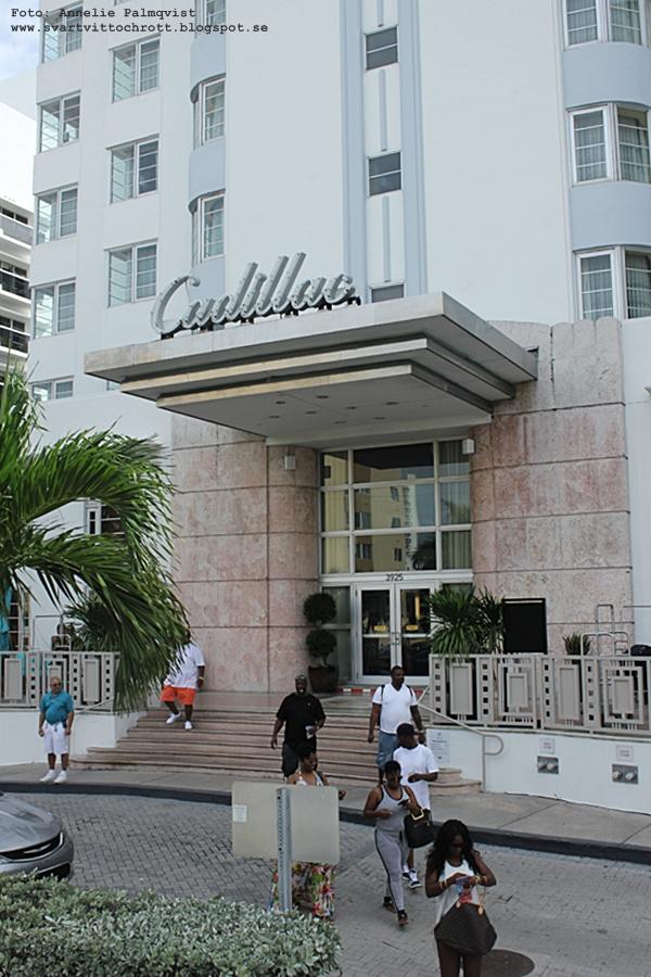 elvis presley, hotell cadillac, miami, florida,