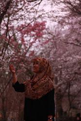 Sakura Beneran