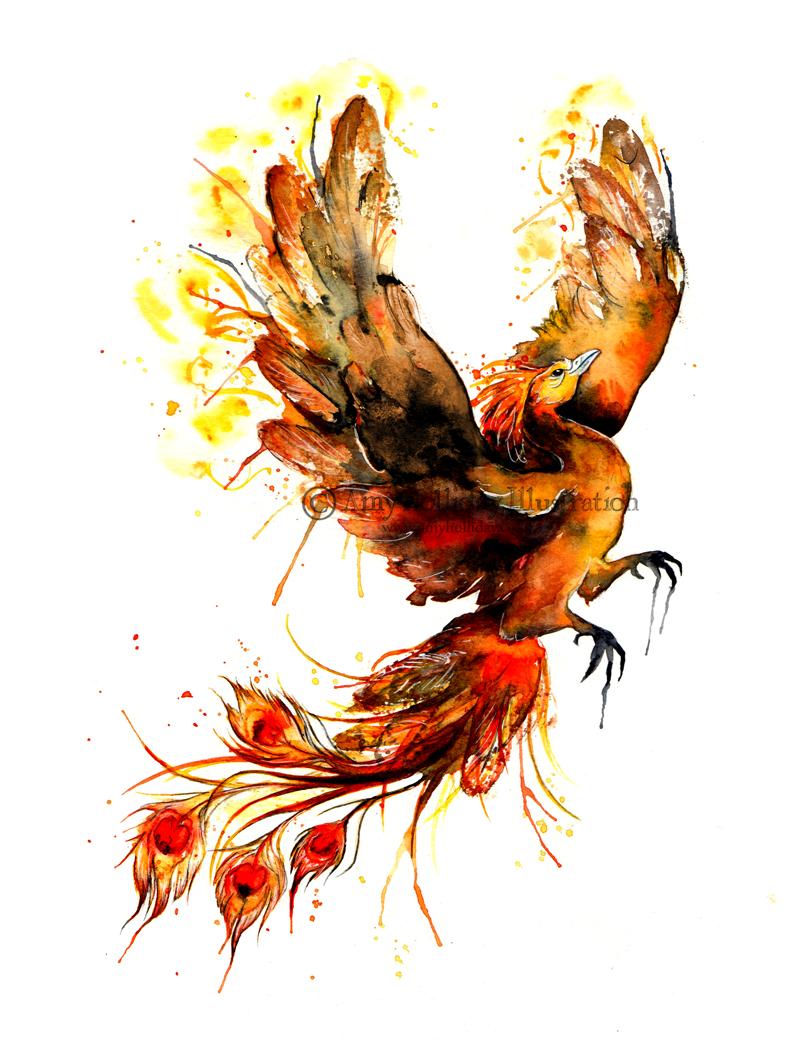 amy holliday illustration tattoo a phoenix risen. Black Bedroom Furniture Sets. Home Design Ideas