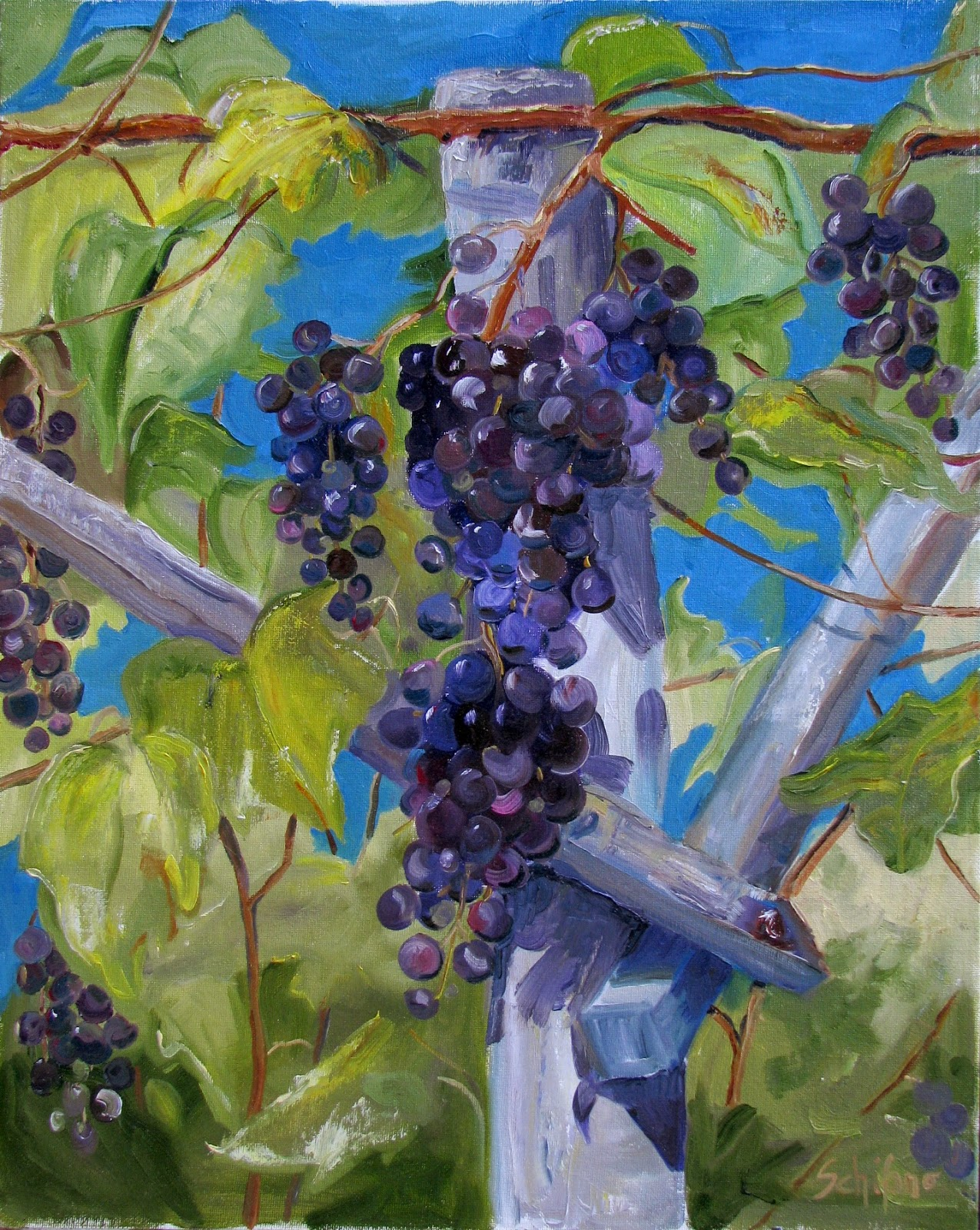 Kath Schifano, grapes, vineyard, oil paint grapes