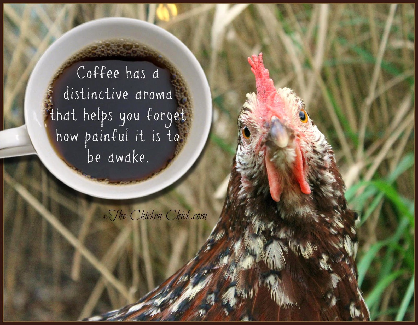 Coffee has a distinctive aroma that helps you forget how painful it is to be awake.