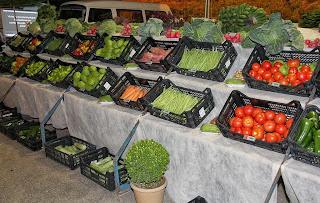Exposição de produtos agrícolas mostra a força da agricultura no município