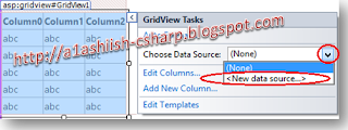 Create a new DataSource for Gridview