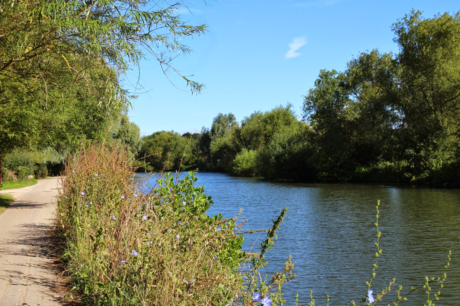La Rivière IMG_0195