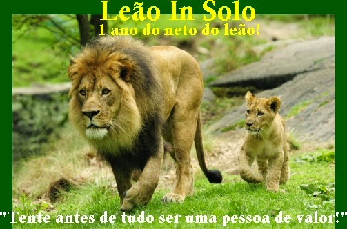 Leão In Solo