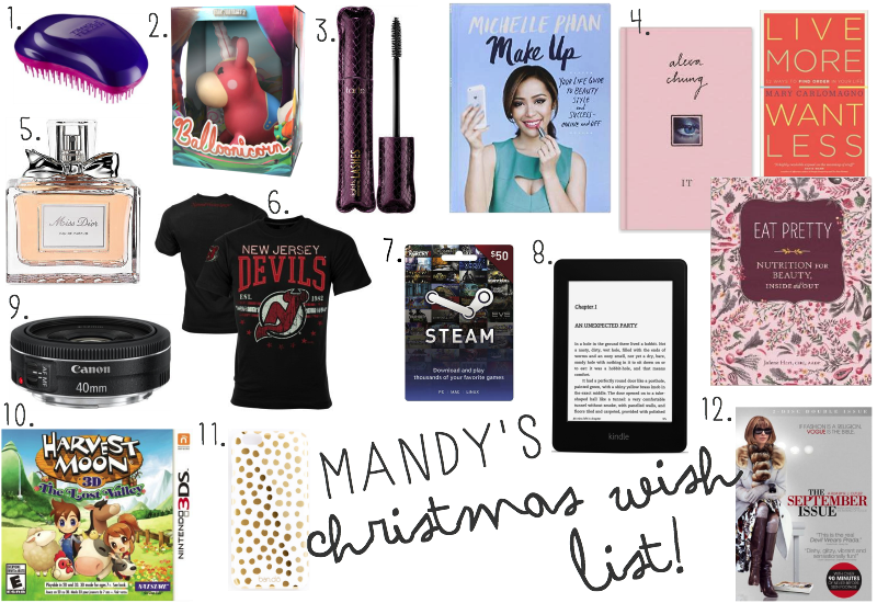 Mandy's Christmas Wish List | Mandy Leigh Blog