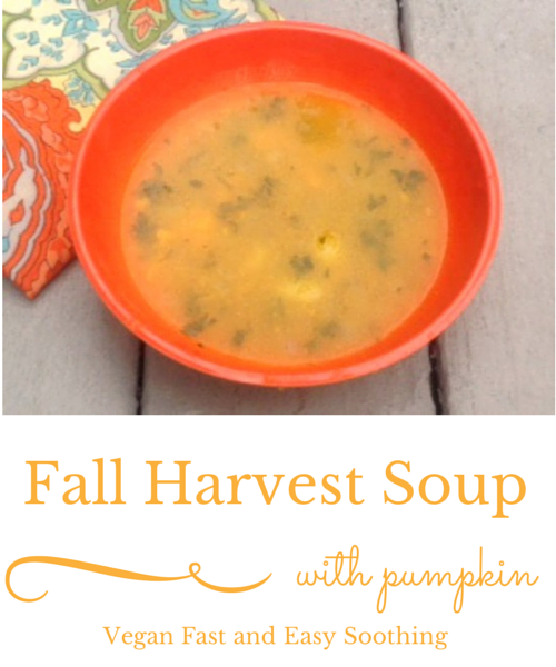 vegan fall harvest soup with pumpkin
