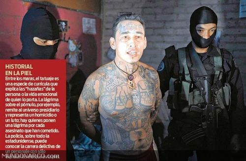 Extrema Violencia Usada Por Los C  Rteles Mexicanos De La Droga  Con