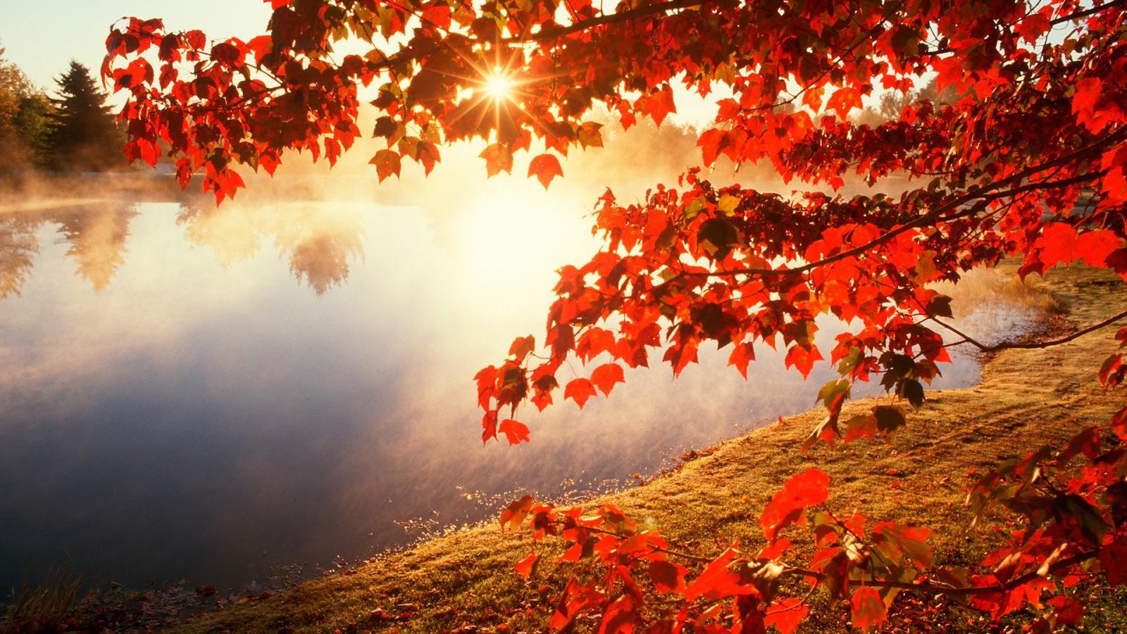 http://4.bp.blogspot.com/-jObInwj__3U/VEPSvoPyZoI/AAAAAAAAFJs/fmVJBvqFeWU/s1600/Red-autumn-morning.jpg