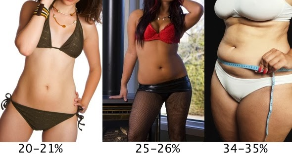 With you female percent body fat can suggest
