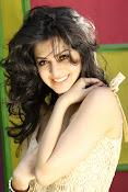 Vedhika glamorous photos gallery-thumbnail-8