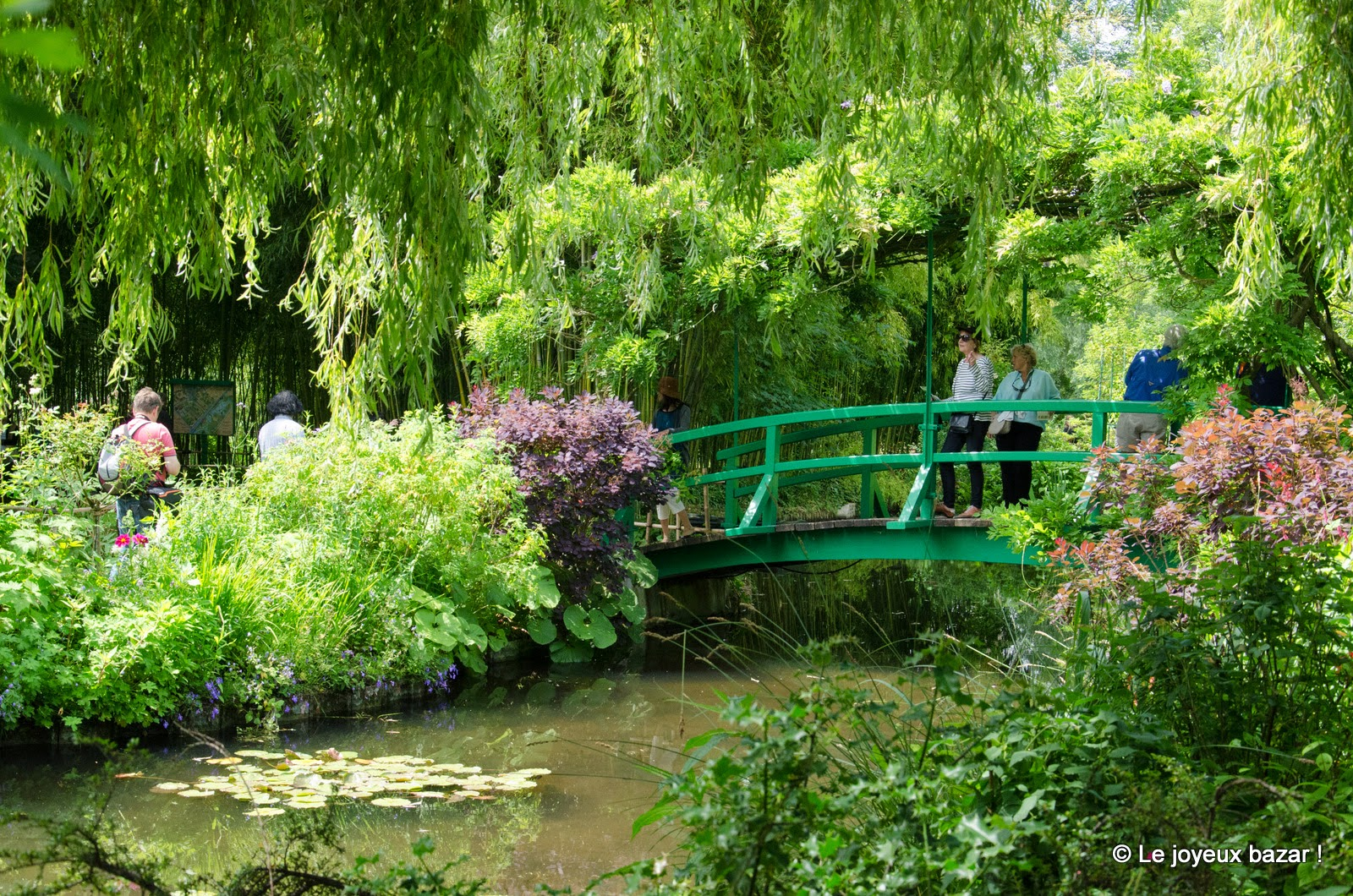 Giverny - Monet -  jardin d'eau - nympheas