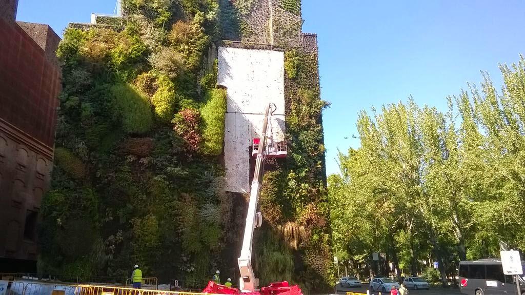 renovacion jardin vertical