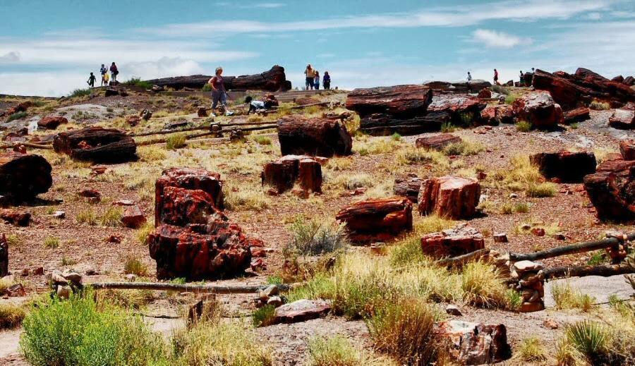 El Parque Nacional del Bosque Petrificado en Arizona, Estados Unidos