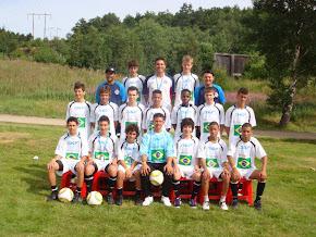 Gothia Cup - 2010