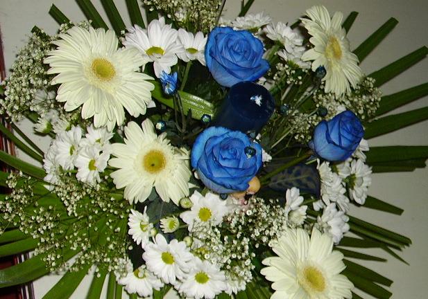 truco centro flores